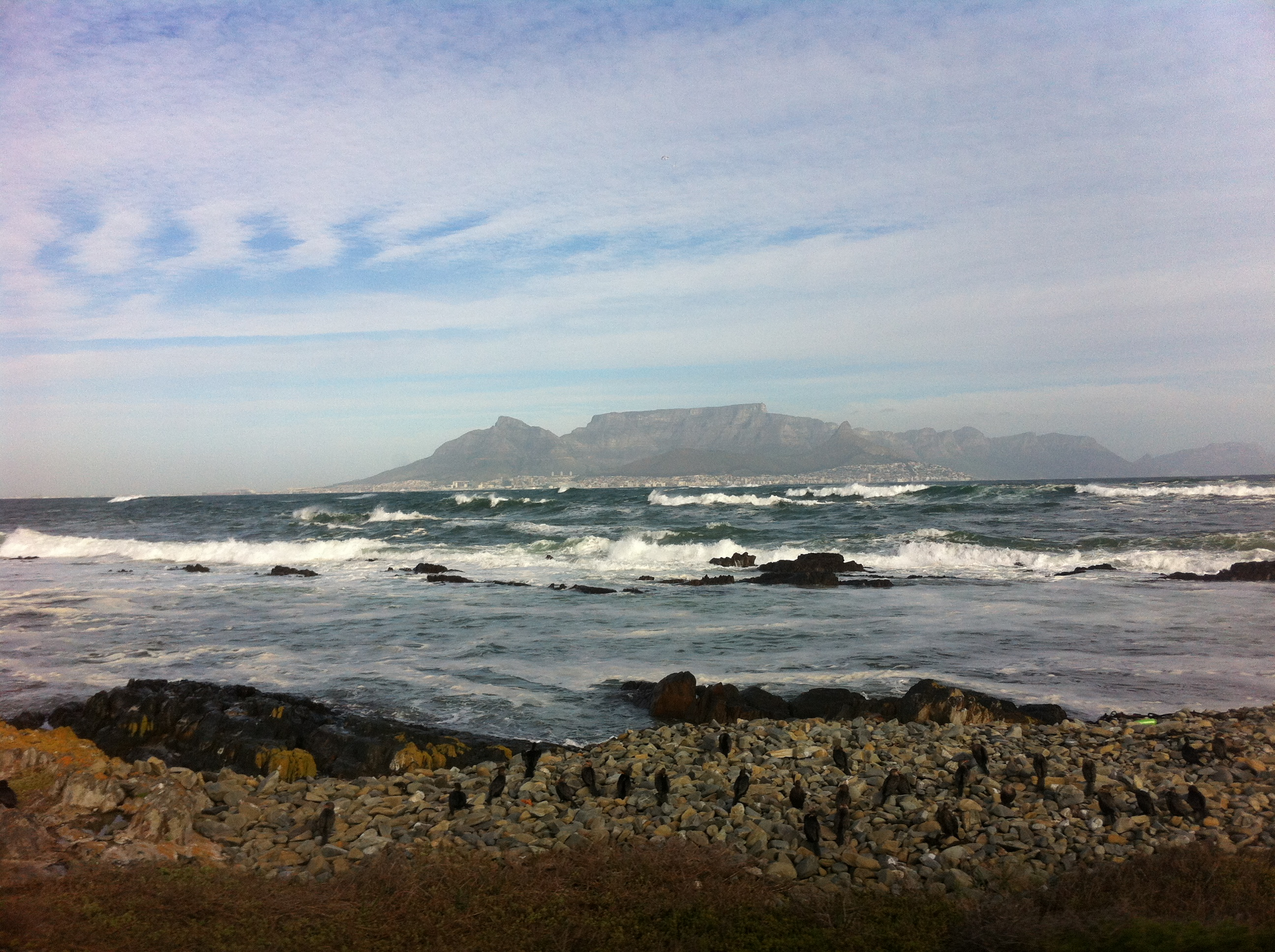 Dutch east india company andrew in south africa - Robben island and table mountain tour ...